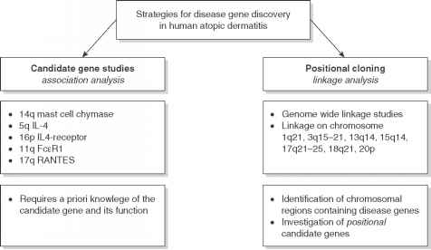 Treatment Genetic Diseases Strategies