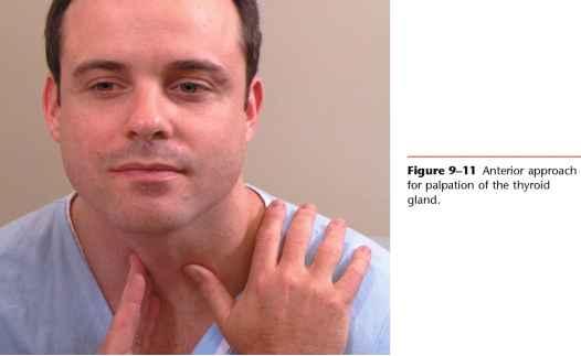 Swollen Right Carotid Artery Physical Diagnosis